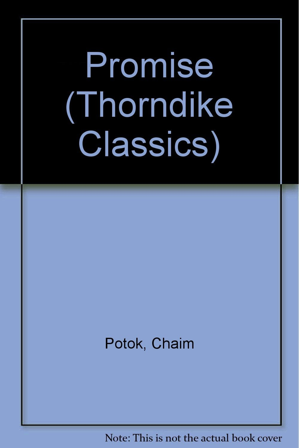 the promise by chaim potok Title: the promise chaim potok penguin books, 1969 i chose this book because i really liked the way it was written i had just read the chosen, of which this book is the sequel, only in dutch, so i still had that book in my mind.