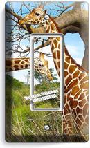 African Giraffe Love Animals 1 Gfci Light Switch Wall Plate Cover Room Art Decor - $9.89