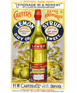 Fruit Sryup Carter's Bristol 11x17 Advertising  Reproduction Print Vintage - $18.95