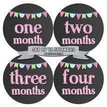 MONTHS IN MOTION Monthly Baby Stickers Newborn Infant GIRL Milestone Pho... - $10.95