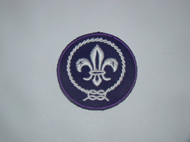 Boy Scouts Of America (Patch) - $10.00