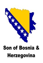 Son of Bosnia and Herzegovina Country Map Flag Poster Print High Quality... - $6.90+