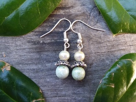 Earth Sea Beaded Dangle Earrings - $6.00