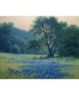 Hagerman Landscape Oil Painting Original Texas bluebonnets oak tree scenery - $225.00