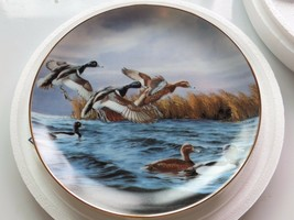 Feeding Time On the wing David Maass,plate No.M8771 the Danbury Mint,198... - $23.75