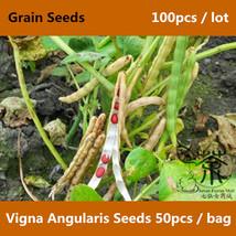 Azuki Bean Vigna Angularis Seeds 100pcs, Adzuki Bean Grain Seed, Aduki B... - $5.98+