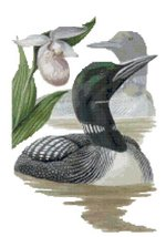 Minnesota State Bird and Flower Common Loon and Pink and White Lady's Sl... - $19.04