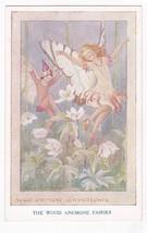 The Wood Anemone Fairies Vintage Artist Signed Postcard Tarrant - $7.68