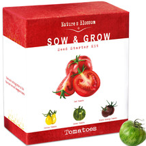 Grow 4 Types of Tomatoes From Seed with Nature's Blossom Gardening Kit - $40.00