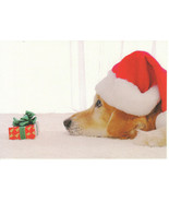 Christmas Card Golden Retriever Dog in Santa Claus Hat Unused with Envelope - $6.92