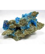 Chalcanthite on matrix Bertha Mine aka Dugway Property, Tooele Co., Utah... - $89.99
