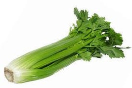 CELERY STALK SEEDS 50 Fresh vegetable seeds ready to plant in your garden - $1.99