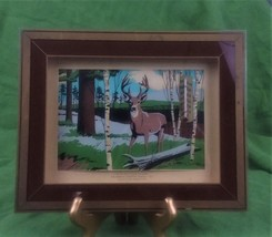 VINTAGE THE VERNON CO. SHADOW BOX WOODS AREA W/BUCK THERMOMETER 7V-810-6 - $28.46