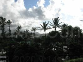 Photo of Beautiful Gardens And Skyline In Kaua'i, Hawaii - $2.50