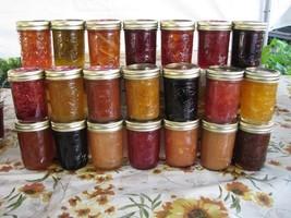 Blueberry Lemon Basil Jam 4 Oz Size Arkansas Grown/Made Organic Great Gi... - $3.00