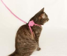 Cat harness - Dog harness - $25.00