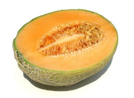 SHIPPED FROM US 40 Cantaloupe Hales Best Jumbo Vegetable Seeds, GS04 - $11.00