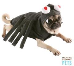 Martha Stewart Pets used Dog Halloween costume Large  Spider shimmer spa... - $11.87