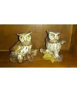 Bone China Owl Figures 5 Inch  - $9.55