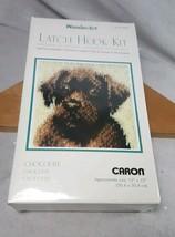 Wonder Art Caron Latch Hook Kit 12 x12 Chocolate Lab Dog New Sealed - $15.83