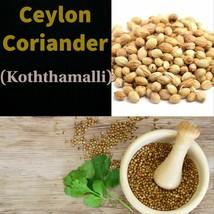 ceylon spices Coriander Seeds( Koththamalli )Fresh Natural Organic Food Medicine - $7.99+