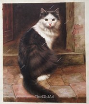 Old Master Art Man Portrait Cat Kitten Animal Oil Painting Canvas 20x24 - $270.00