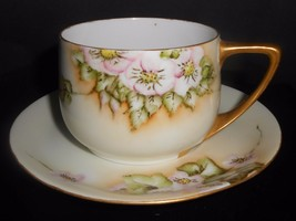 Rosenthal Cup and Saucer Donatello Wild Rose 1922 Green Mark Antique - $9.50