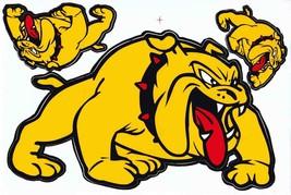 D520 Bulldog dog Sticker Decal Racing Tuning Size 27x18 cm / 10x7 inch - $3.49