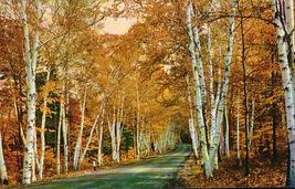 Shelburne Memorial Highway White Mountains N. H. - $2.99