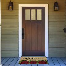 Achim Home Furnishings PCM1830LB6 Ladybug Printed Coir Door Mat, 18' x 30' - $26.23