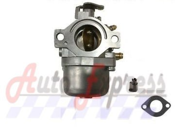 Fits Briggs & Stratton Engine Lawnmower Carburetor Carb 799728 494392 494502