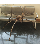 Halloween Giant Hairy Spider with LED Eyes for Decoration - $34.99