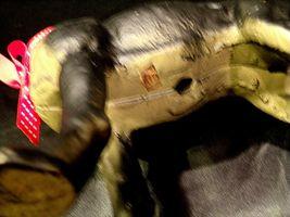 Antique Cast Iron Boxer Boston Terrier Replica AA-191739 Vintage Collectible image 5