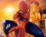 """Stan Lee Signed Autographed """"Spider-Man"""" Glossy 16x20 Photo (PSA/DNA COA)"""