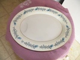 Theodore Haviland Clinton 11 7/8 oval platter 1 available - $9.26