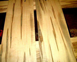 """2 PIECES KILN DRIED SANDED THIN CURLY AMBROSIA MAPLE 23 1/2 X 9 1/4 X 3/8"""" E"""