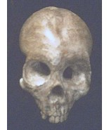 Human Skull Decayed Gothic Wall Hanging Halloween Prop Brown Dead Bone H... - $14.99
