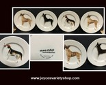 Ermo zoo dog plates web collage thumb155 crop