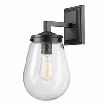 Globe Electric Winston 1-Light Outdoor/Indoor Wall Sconce, Matte Black, Clear Se