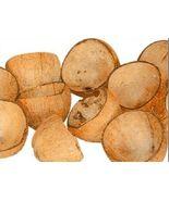 Eco-friendly coconut shells Natural Coconut Shell Bowls / Cups - $3.46+