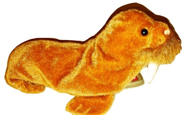 Ty Beanie Baby 1999 Paul The Walrus Retired Plush Toy image 3