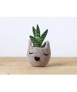 Felt succulent planter/7th anniversary gift/Small succulent pot/Cat head... - $24.00