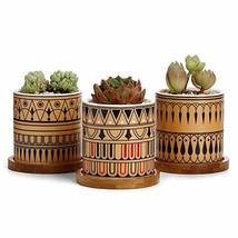 Greenaholics Succulent Plant Pots - 3 Inch Cylinder Greek Sytle Ceramic ... - $25.74 CAD
