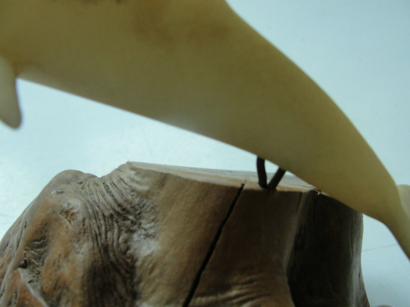 John Perry white dolphin on wood, carving