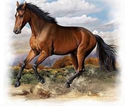 American Quarter Horse Cross Stitch Pattern LOOK - $4.95