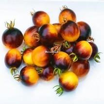 200Pcs Hausgarten Balkon organische köstliche Frucht seltene Tomaten DL0 - $2.00