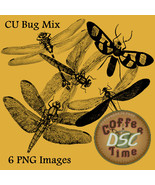 Bugs Insects Dragonflies Clip Art Transparant pngs Commercial Use - $2.00