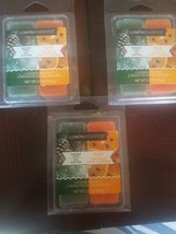 Luminessence Scented Wax Melts Winter Pine And Orange Clove Set Of 3 2.5... - $20.67