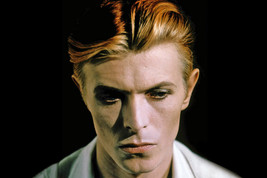 David Bowie in The Man Who Fell to Earth Moody Artsy Portrait as Newton 18x24 Po - $23.99