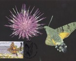 Guernsey Hummingbird Hawk Moth WWF Stamp First Day Cover Postcard
